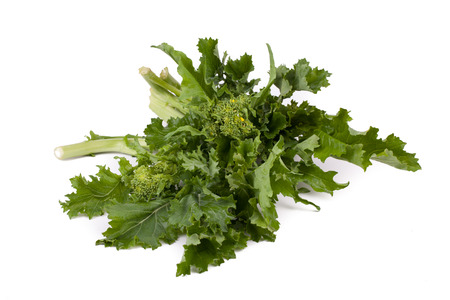 Bunch of fresh rapini isolated on white background.