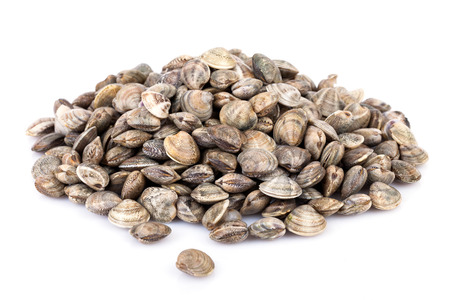 Raw lupins clams over white background.