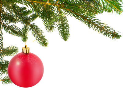 holiday ornament: Christmas ball and fir branch on white background.