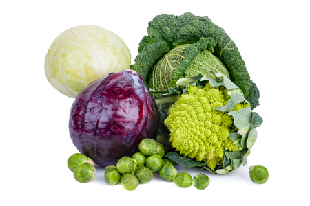 Mix of cabbages on white background: white cabbage, red cabbage, Savoy cabbage, Roman cabbage and Brussels sprouts.