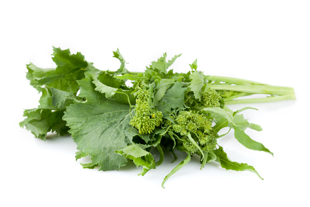 Fresh rapini isolated on white background.