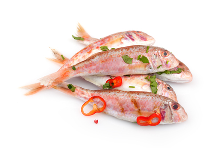 barbel: Raw red mullet fish seasoned with chopped parsley and red pepper, isolated on white background.