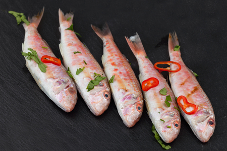barbel: Raw red mullet fish seasoned with chopped parsley and red pepper, on black background.