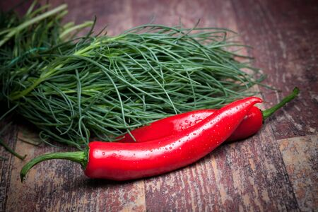 saltwort: Fresh ingredients from the garden: agretti (saltwort) and red hot chili peppers.