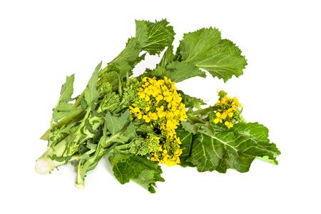 comida: rabe bróculos frescos, folhas e inflorescência, isolado no fundo branco. Imagens