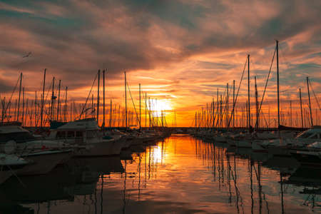 Sailboat marina at sunset Civitavecchia Lazio Italy