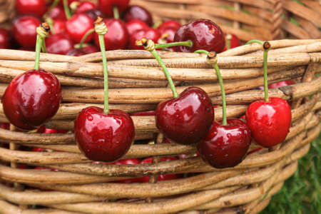 Cherries hanging from the edge of a basket Stok Fotoğraf