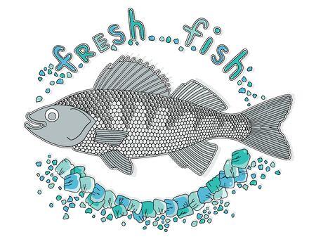 handdrawn: the hand-drawn fish and pieces of ice sivoliziruet fresh fish