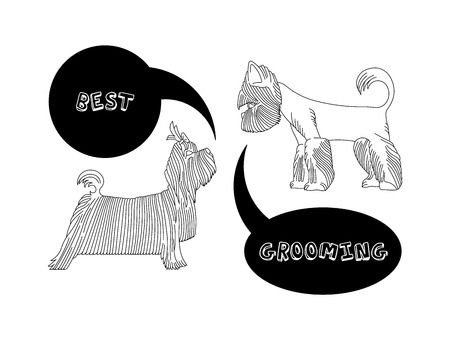 groomed: Version of the  advertisement for a hairdressers salon for pets. Vector, easy recolor. Illustration