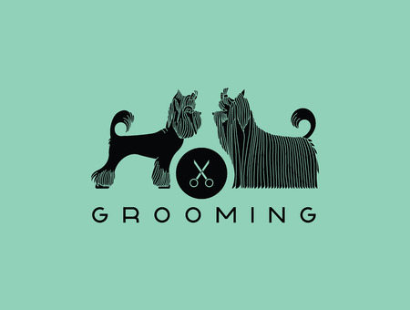 dog grooming: Version of the or advertisement for a hairdressers salon for pets. Vector, easy recolor. Illustration