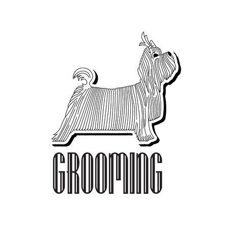 groomed: Version  or advertisement for a hairdressers salon for pets. Vector, easy recolor.