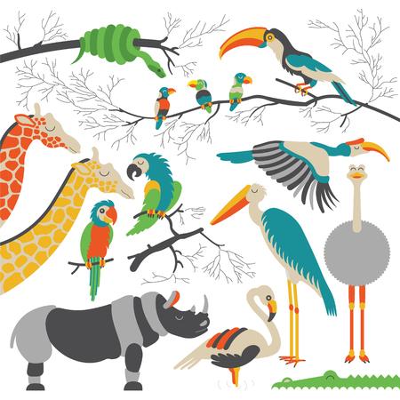 hipopotamo caricatura: Conjunto de animales africanos y aves. animales africanos planas. Cada animales y aves son aisladas y agrupadas por separado.