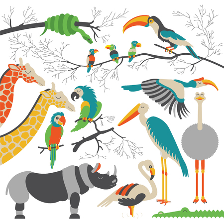 cartoon parrot: Set of african animals and birds. flat african animals. Each animals and birds are isolated and separately grouped. Illustration