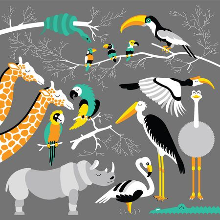 hornbill: Set of african animals and birds. flat african animals. Each animals and birds are isolated and separately grouped. Illustration