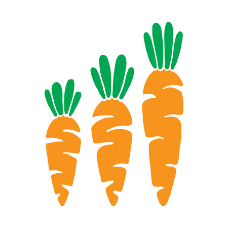 carrot isolated: Vector veg carrot illustration. Vector carrot in cartoon style. Carrot isolated on white background.  Carrot, vegetable, food, vector flat style. Illustration
