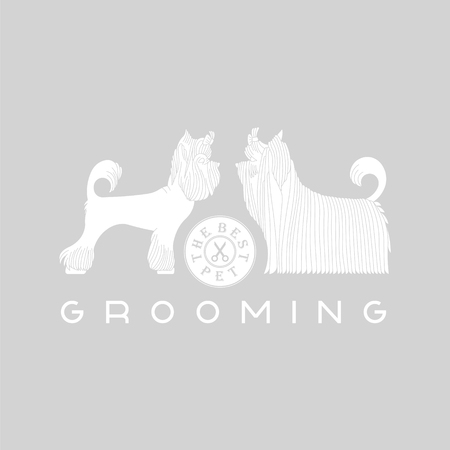 Vector dog grooming logo. Pet grooming logo. Animals hair salon logo labels badges. Dog grooming logo design element. Animal care logo sign. Vector dog grooming. Pet animal logo signs. Illustration