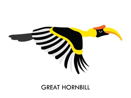 hornbill: Cartoon african Hornbill bird. Vector cartoon african bird made in flat style. Isolated wild african Hornbill. Cartoon wild african bird background. Isolated african Hornbill.