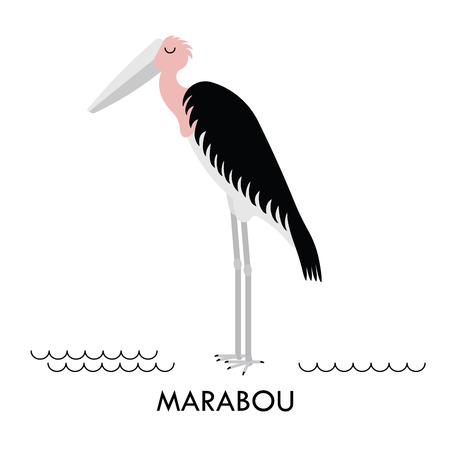 amazon rainforest: Cartoon african Marabou bird. Vector cartoon african bird made in flat style. Isolated wild african Marabou. Cartoon wild african bird background.