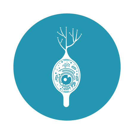 neurone: Isolated neurone cell biology icon. Neurone cell anatomy structure vector illustration. Axon cell body. Illustration
