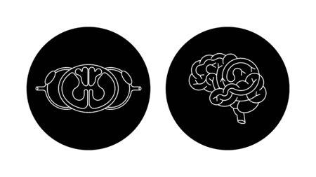 sistema nervioso central: cerebral aislada del vector y la médula espinal. Sistema nervioso central. logotipo del SNC, el cerebro humano para el diseño médico.