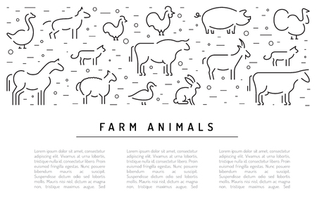 Farm animals flat linear on a white background banner with place for text. Booklet for advertising of farm products Illustration