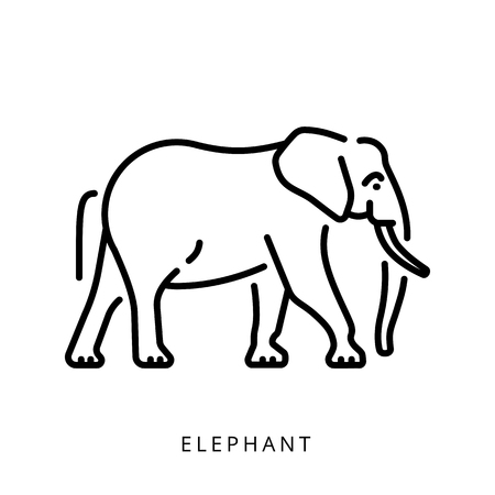 Elephant outline   minimalist  , simple vector illustration of the elephant. Иллюстрация