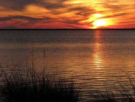 Oranje zons ondergang over water en moeras gras