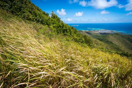 peaceful scene: Peaceful scene overlooking a tropical yet somewhat arid hillside