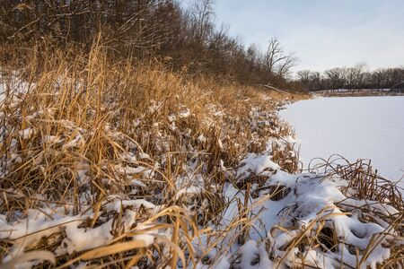 marshy: A calm, snow-covered scene of a marshy lake