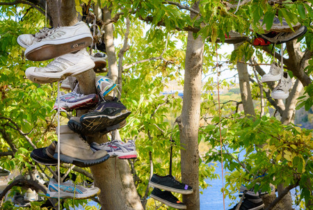 discarded: Discarded shoes hanging on a tree by a river Stock Photo
