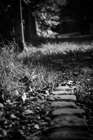 noire: A film noire, low angle shot of the edge of a path. Stock Photo