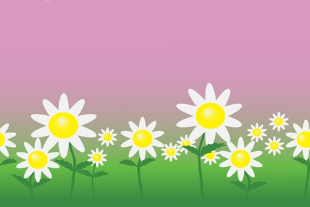 Meadow with daisies at the pink sky. Seamless.  Vector