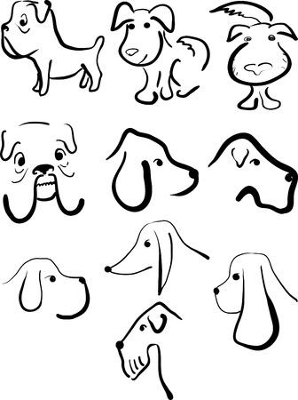 beagle puppy: Conjunto de bocetos de diferentes razas de perros