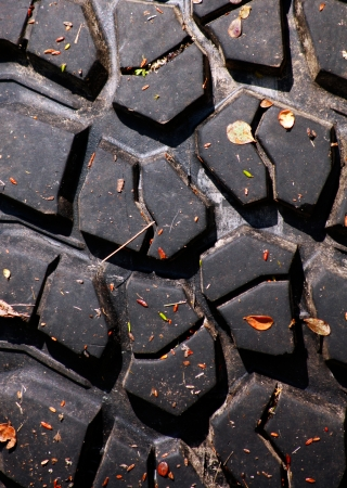 Texture of tread of tyre with autumn leaves photo