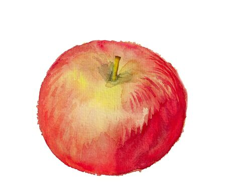 Watercolor image of red apple isolated on white background photo