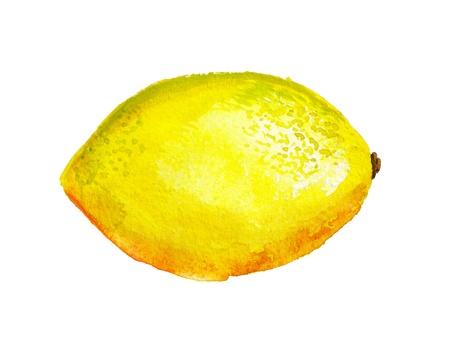 Watercolor image of lemon isolated on white background
