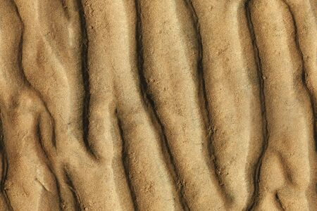 Seamless grooved texture of sand bottom of sea photo