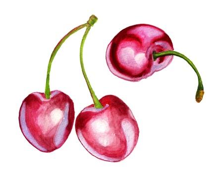Watercolor image of three berries of sweet cherry Stock Photo