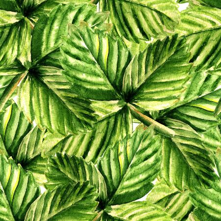 Seamless pattern with watercolor strawberry leaves  Pattern can be used as background, wallpaper, textil design etc