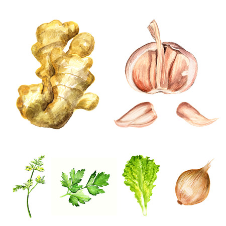 Watercolor image of condiments and flavouring