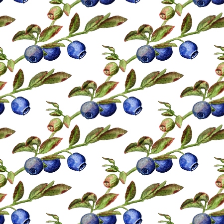 Seamless pattern with watercolor image of blueberry Stock Photo