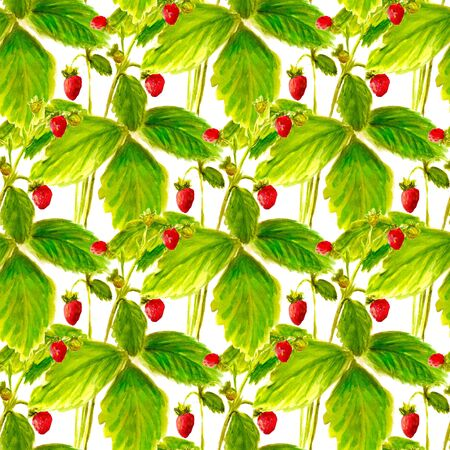 Seamless pattern with watercolor image of wild strawberry