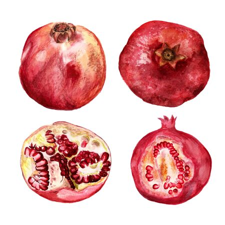 Set of watercolor images of pomegranates