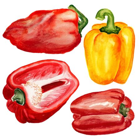 Set of watercolor images of paprika on white background