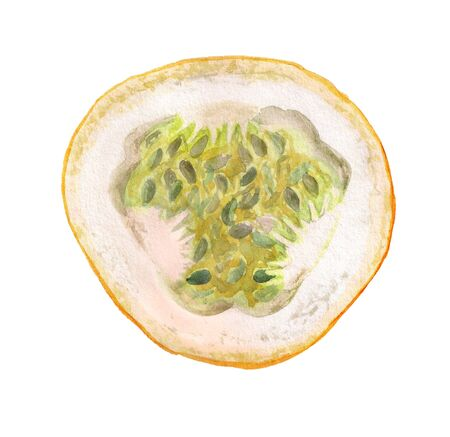 Watercolor image of half of passiflora fruit on white background