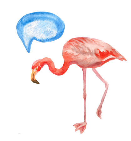 Watercolor image of pink flamingo on white background.  Image has speech bubble for your text.