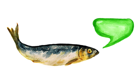 Watercolor image of salted herring on white background.  Image has speech bubble for your text. Stock Photo