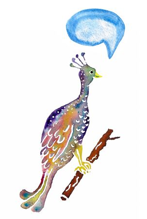 Decorative watercolor image of peacock on white background.  Image has speech bubble for your text.