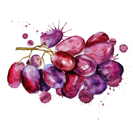 Watercolor image of bunch of red grapes with paint blots on white background 版權商用圖片