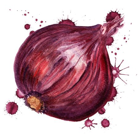 Watercolor image of red onion with paint blots on white background